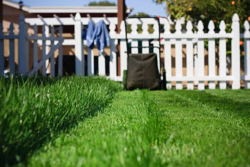 Freshly mown grass with a lawn mower in background