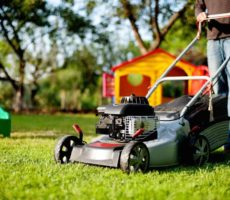 How Long Should You Wait to Mow the Grass After It Rains?
