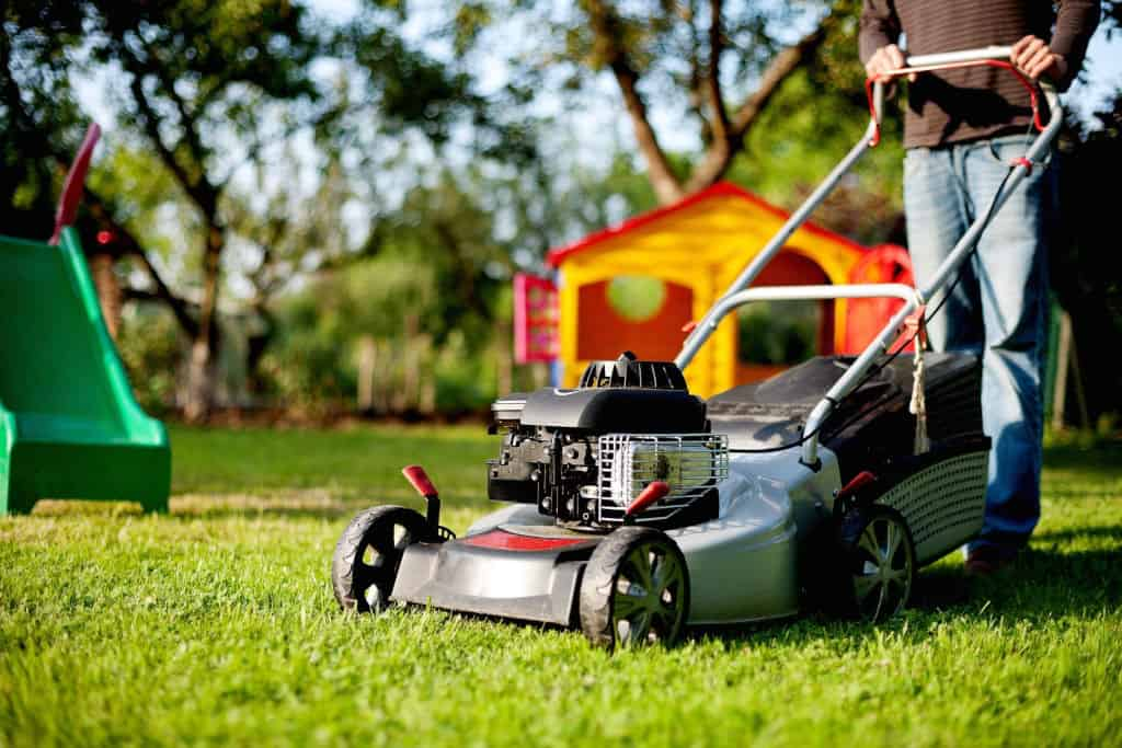 You are currently viewing How Long Should You Wait to Mow the Grass After It Rains?