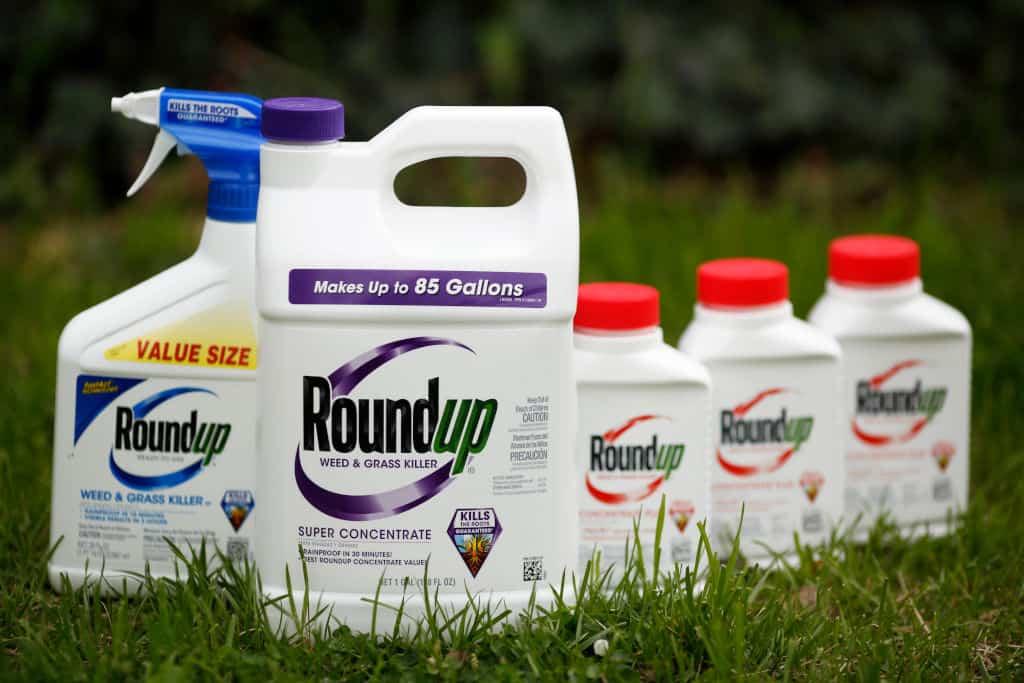 Roundup, glyphosate, on grass